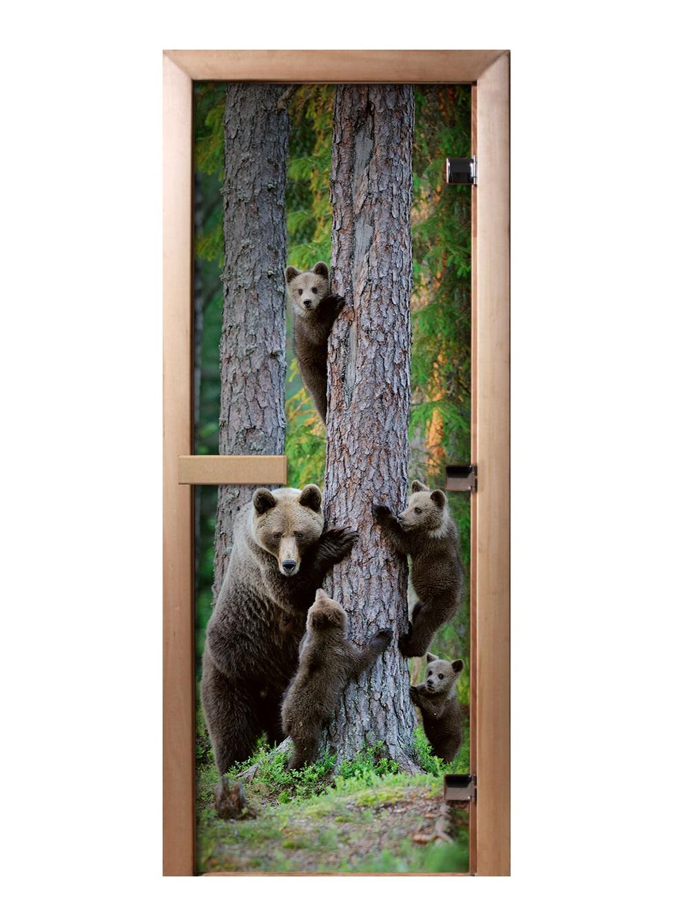 Дверь стеклянная фотопечать А064 1900х700